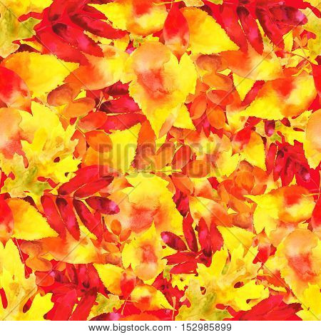 Autumn Leaves Seamless Pattern in Warm Colors
