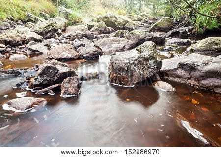 deep in the forest there is river beside a large boulder