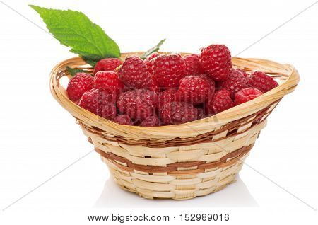 ripe raspberries in basket with mint isolated on white