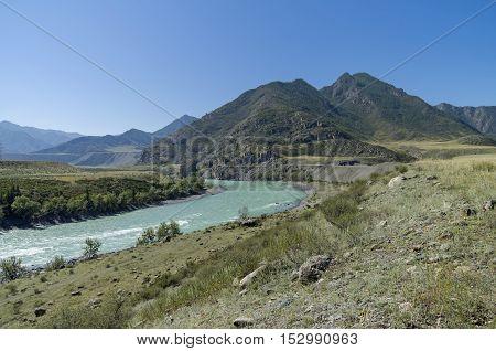 Katun River. Altai Mountains Russia. Sunny summer day.