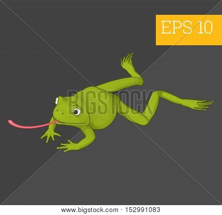 Toad Isometric Vector Illustration