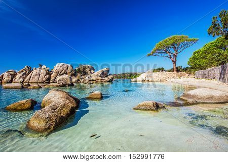 Palombaggia Beach, Corsica, France, Europe.