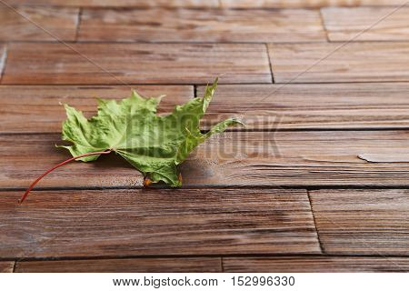 Autumn Leaf On Brown Wooden Table