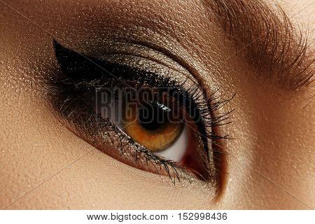 Elegance Close-up Of Beautiful Female Eye With Fashion Eyeshadow