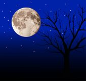 image of wane  - full moon and tree - JPG