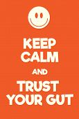 Keep Calm And Trust Your Gut Poster poster