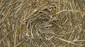 Straw For Animal Bedding . Background. Close-Ups. poster