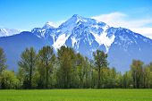 picture of rocky-mountains  - Snow capped Rocky Mountains - JPG