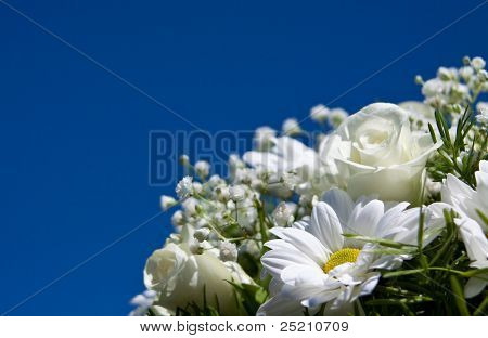 Daisies And Roses Against The Sky