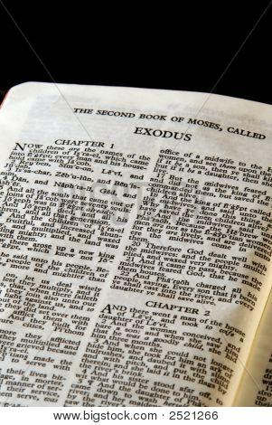 Bible Series Exodus