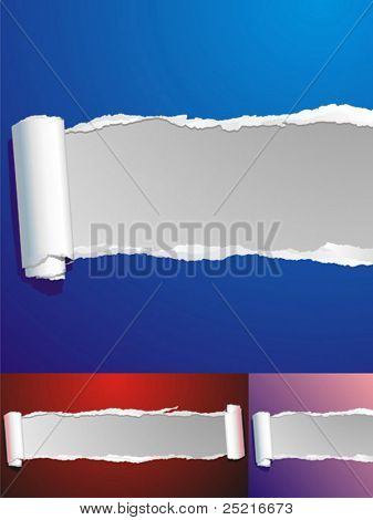 vector ripped paper