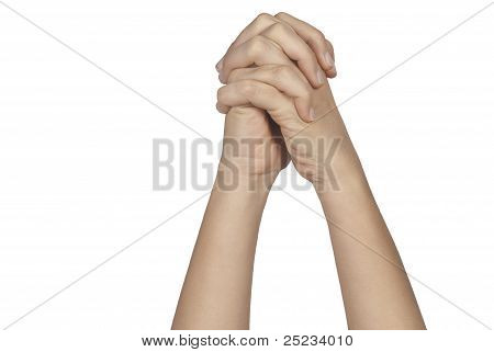 Praying Hands Isolated On White Background
