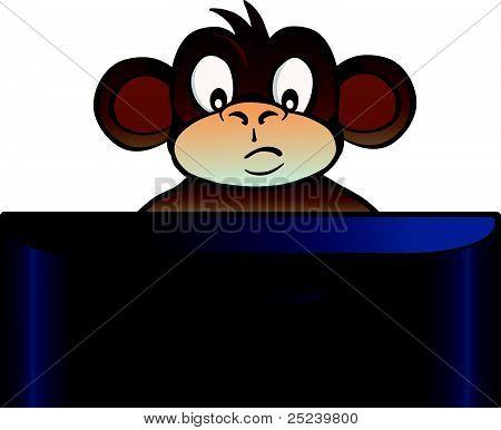 Monkey behind screen