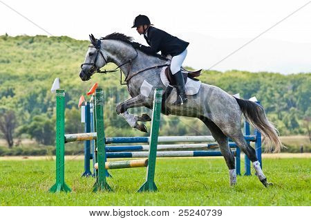Unidentified rider with horse show jumps