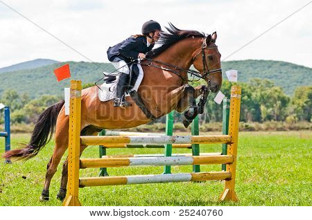 rider show jumps