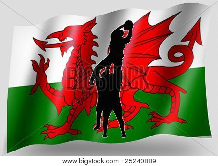Country Flag Sport Icon Silhouette Welsh Rugby Lineout