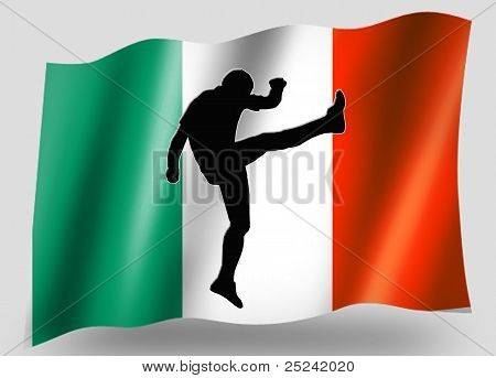 Country Flag Sport Icon Silhouette Irish Rugby High Kicker