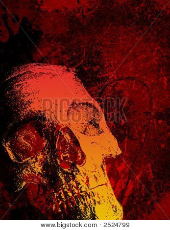 Skull And Texture, Portrait Layout