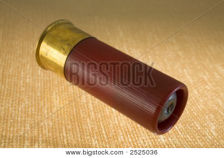 12 Gauge Shotgun Slug