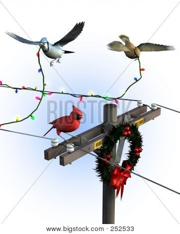 Birds Decorating For Christmas