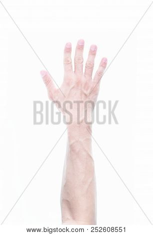 Man Arm With Blood Vain