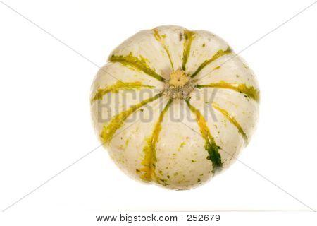 Ornamental Squash 4