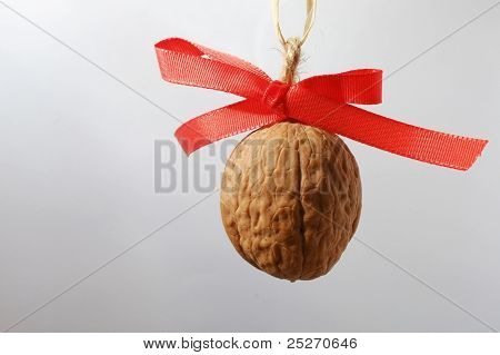 Walnut on blueish background with red bow-knot