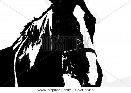 Silhouette horse