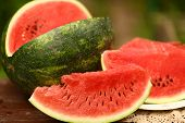 Cut Ripe Big Water Melon Still Life With Knife On Green Garden Background Close Up Photo poster