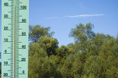 A Thermometer With A Temperature Of +40 Degrees Celsius On A Landscape With Trees. Heat. poster