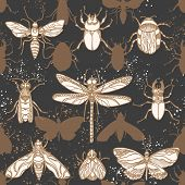 Vector Seamless Pattern. Shape Moths In The Night. Protection Insects Nature Animal Graphic Print. S poster