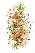 Granola Bars With Cocos Chips And Green Palm Leaves Decoration poster