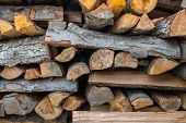 Preparation Of Firewood For The Winter. Firewood Background, Stacks Of Firewood In The Forest. Pile poster