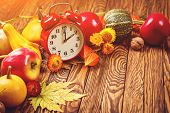 Autumn Harvest Concept. Fall Fruit And Vegetables On Wooden Background. Thanksgiving Day. Autumn Car poster