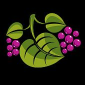 Spring Or Summer Leaf Simple Vector Icon, Nature And Gardening Theme Illustration. Stylized Tree Lea poster
