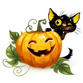 Halloween Kitty And Funny Pumpkins. Isolated On A White Background. Vector Illustration. poster