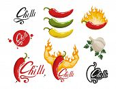 Hand Drawn Red Hot Pepper. Spicy Ingredient. Chili Logo. Spice Hot Chili Pepper Isolated On White Ba poster