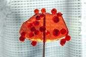 Sweet Lollipop With Red Ripe Currant Berries. The Concept Of Cohesion Is Sweet And Sweet poster