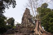 Ancient Ruins Of Preah Palilay Temple In Angkor Wat Complex, Cambodia. Tree Grows From Ancient Build poster