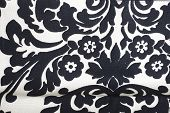 foto of white flower  - Black and white pattern with flowers and leaves - JPG