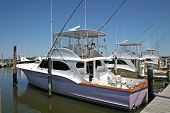 foto of pontoon boat  - fishing boats moored at pontoon for hire - JPG