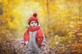 Cute Baby In Autumn Clothes. Child In Knitted Hats And Scarf poster