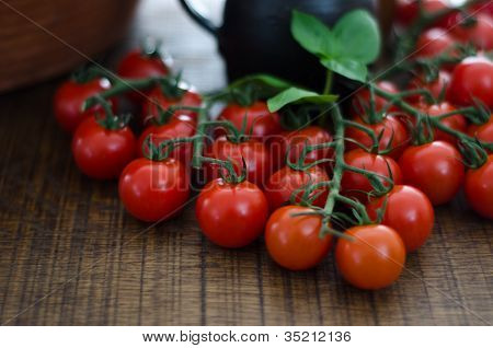Cherry Tomatoes On Stalks