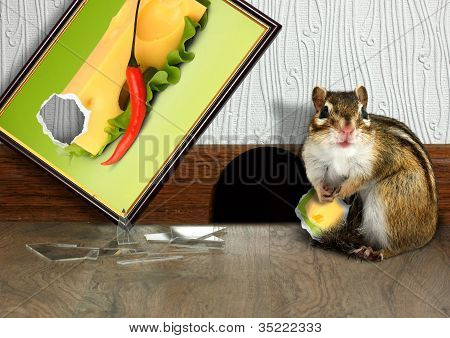 Prankish Chipmunk Broke Picture