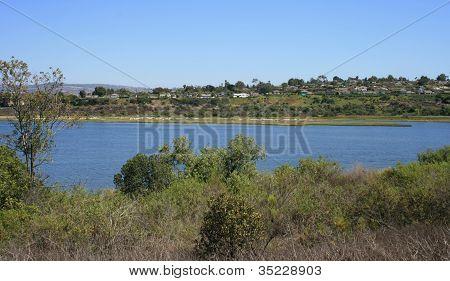 Back Bay Wetland Panorama