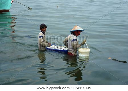 carrying fish