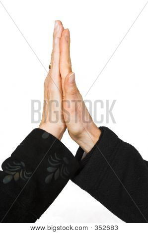 Business Handshake - Female Hands