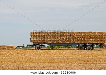 Hay trailer in field with blue sky