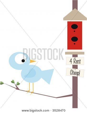 Bluebird Cheep Rent