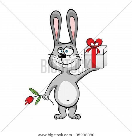 Jackrabbit with giftbox